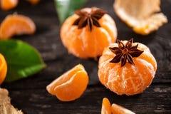Tangerine sok z tangerine plasterkami i anyż gramy główna rolę Zdjęcia Stock