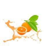 Tangerine splash Stock Image