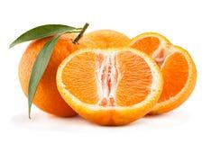 Tangerine tropical fruit on white Stock Images