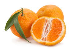 Tangerine tropical fruit on white Royalty Free Stock Images