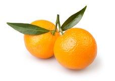 Tangerine two. On white background Stock Photo