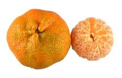 Tangerine. Stock Image