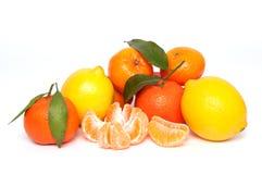 Tangerine und Zitrone Lizenzfreies Stockfoto