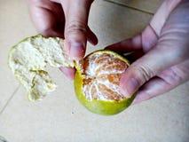 Tangerine łupa Zdjęcia Stock