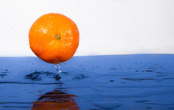 Tangerine with water splash. Fresh, wet, clear tropical royalty free stock photography