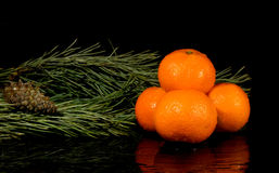 Tangerine with water splash. Fresh, wet, clear tropical stock photos