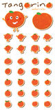 Tangerine watercolor set sticker royalty free illustration
