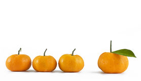 Tangerine on white Royalty Free Stock Photography