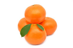Tangerine. On a white background Royalty Free Stock Photos