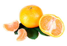 Tangerine With Green Leaves Stock Photos