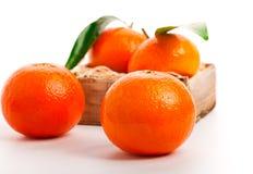 Tangerine. Stock Photos