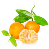 Tangerine z segmentami obrazy stock