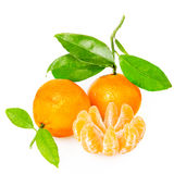 Tangerine z segmentami obraz royalty free