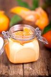 Tangerinefterrätt Royaltyfri Bild