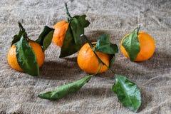 Tangerinen auf rauem Gewebe Lizenzfreie Stockfotos