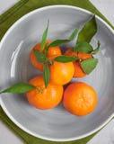 Tangerinen auf weißem hölzernem Hintergrund Abschluss oben Lizenzfreies Stockbild