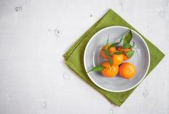 Tangerinen auf weißem hölzernem Hintergrund Freier Platz für Text Lizenzfreies Stockfoto