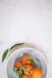 Tangerinen auf weißem hölzernem Hintergrund Groß für Bucheinband Lizenzfreie Stockfotografie