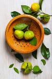 Tangerinen in einem Weinlesesieb stockfotografie