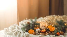 Tangerinen in einer Winterzusammensetzung, Weihnachtsbäume, Kerzen, Kegel, Baumwolle, Zimt, Girlanden Symbol des neuen Jahres und lizenzfreie stockbilder