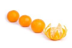 Tangerinen getrennt auf dem weißen Hintergrund Stockbilder