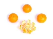 Tangerinen getrennt auf dem weißen Hintergrund Lizenzfreies Stockbild