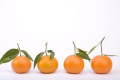 Tangerinen getrennt auf Weiß lizenzfreies stockfoto