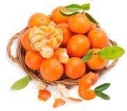 Tangerinen im Abtropfbrett Stockfotografie