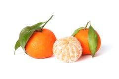 Tangerinen lokalisiert auf einem weißen Hintergrund Stockbilder