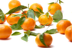 Tangerinen mit Blättern lizenzfreies stockfoto