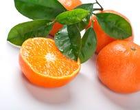 Tangerinen mit grünen Blättern stockbilder