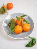 Tangerinen mit grünen Blättern auf weißem hölzernem Hintergrund Stockfotografie