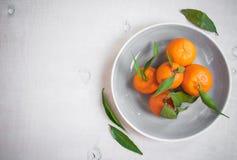 Tangerinen mit grünen Blättern auf weißem hölzernem Hintergrund Stockbild