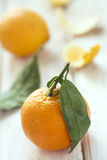Tangerinen mit grünen Blättern Lizenzfreie Stockfotos
