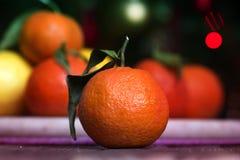 Tangerinen - Orangen, Mandarinen, Klementinen, Zitrusfrüchte mit Blättern lizenzfreie stockfotos