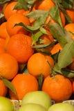 Tangerinen und Äpfel Stockfoto