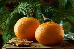 Tangerinen und Ingwerplätzchen auf Fichtenzweighintergrund lizenzfreies stockfoto