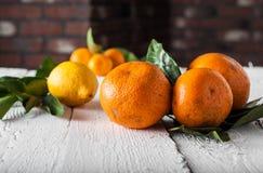 Tangerinen und Zitronen mit Blättern auf einem hölzernen Hintergrund Lizenzfreie Stockbilder