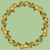 Tangerinen verzieren Kranz der reifen orange Mandarine Gesunder Rahmen vektor abbildung