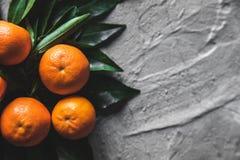 Tangerineorangen, Mandarinen, Klementinen, Zitrusfrüchte mit Blättern auf grauem Zementhintergrund stockfotografie