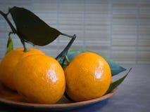 Tangerines δεσμών πορτοκαλί γκρίζο υπόβαθρο κινηματογραφήσεων σε πρώτο πλάνο Στοκ εικόνα με δικαίωμα ελεύθερης χρήσης