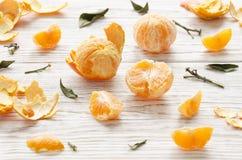 tangerines 1 ζωή ακόμα Στοκ Εικόνες