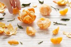 tangerines 1 ζωή ακόμα Στοκ Φωτογραφίες