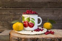 Tangerines και τα βακκίνια Στοκ φωτογραφία με δικαίωμα ελεύθερης χρήσης