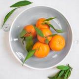 Tangerines με τα πράσινα φύλλα στο άσπρο ξύλινο υπόβαθρο Το στενό u Στοκ Εικόνες
