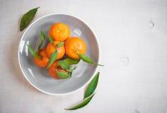 Tangerines με τα πράσινα φύλλα στο άσπρο ξύλινο υπόβαθρο Στοκ φωτογραφία με δικαίωμα ελεύθερης χρήσης