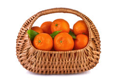 Tangerines με τα φύλλα σε ένα καλάθι Στοκ Εικόνα