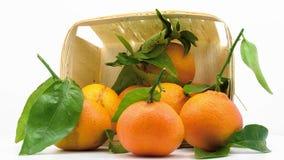 Tangerines με τα φύλλα στο καλάθι φιλμ μικρού μήκους