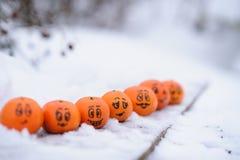 Tangerines με τις διαφορετικές αστείες εκφράσεις του προσώπου Στοκ φωτογραφία με δικαίωμα ελεύθερης χρήσης