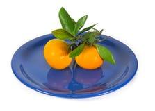 Tangerines με τον κλάδο στο σκούρο μπλε πιάτο στοκ εικόνες